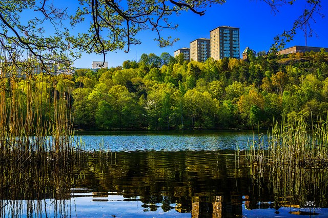 Häuser hinter Bäumen und See
