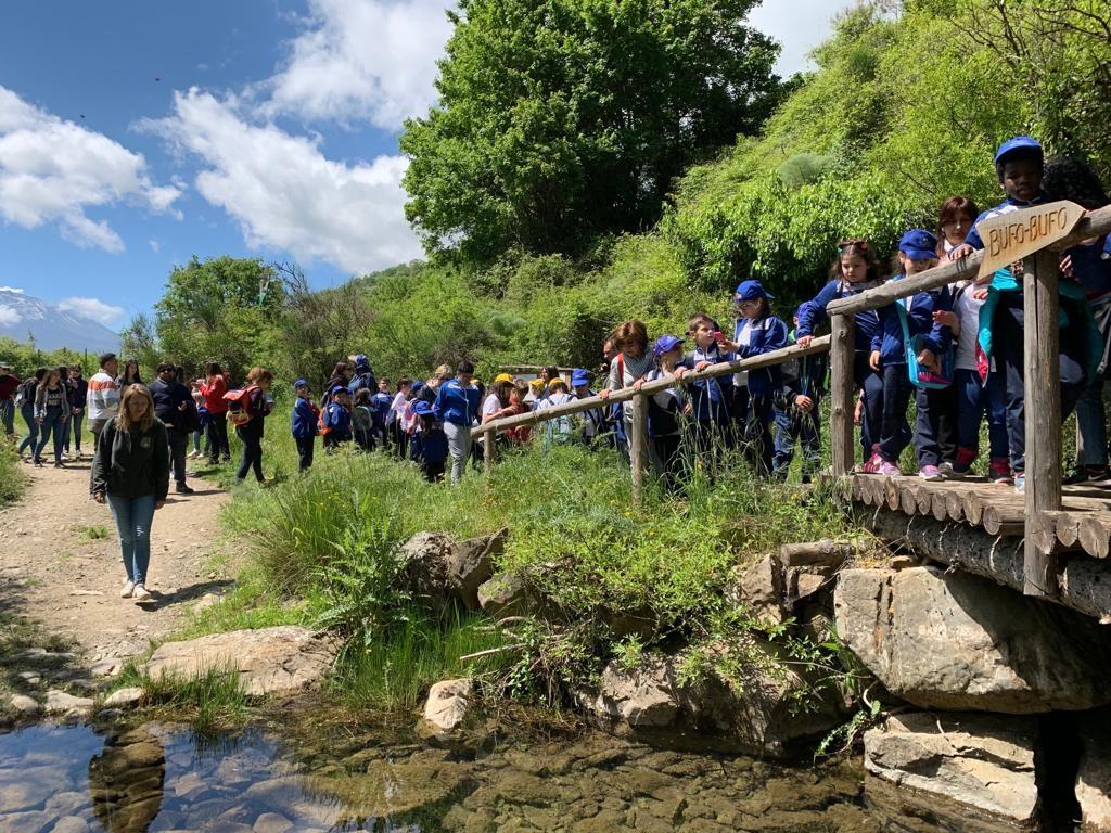 """Kinder und junge Erwachsende stehen vor und auf Brücke über einen Bach, auf dem ein Wegweiser nach """"Bufo Bufo"""" zeigt"""