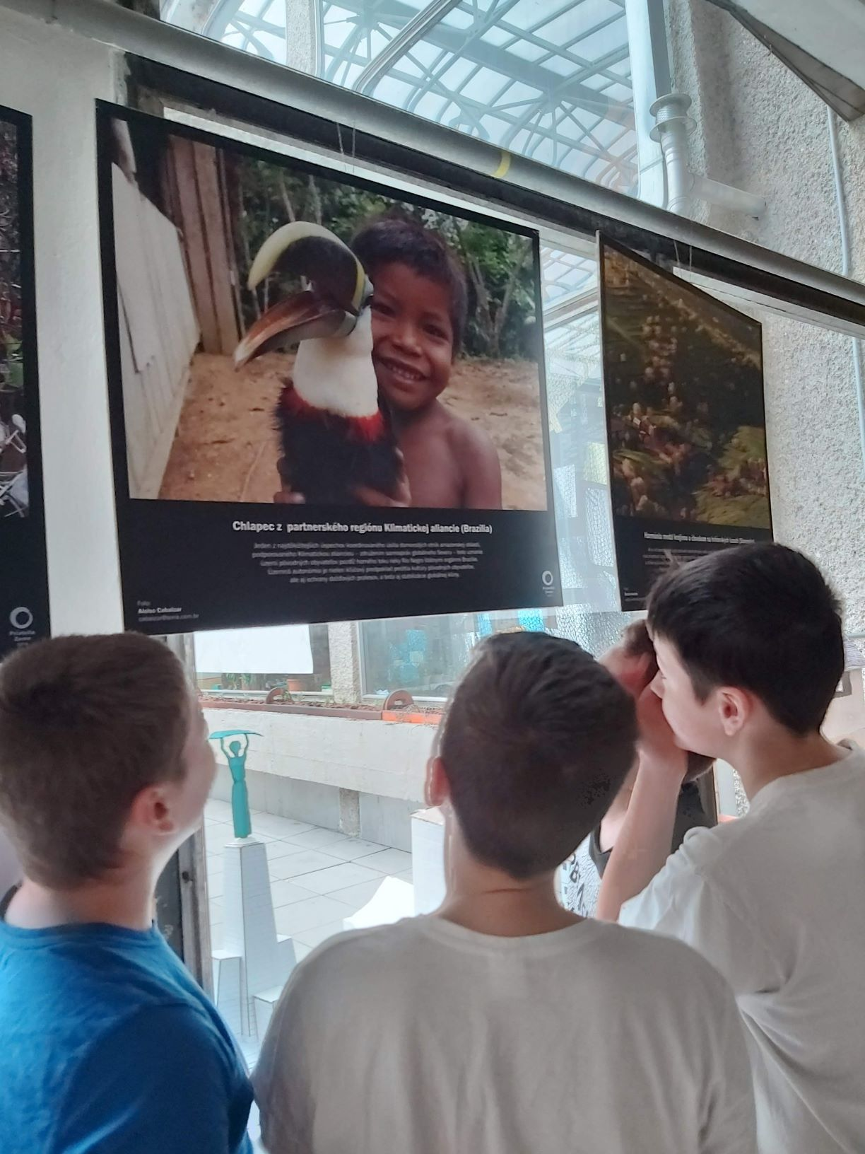 Schüler sehen sich Fotos an