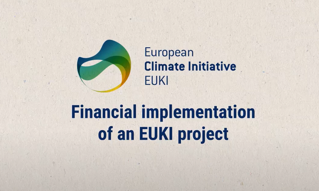 Thumbnail financial implementation of an EUKI project