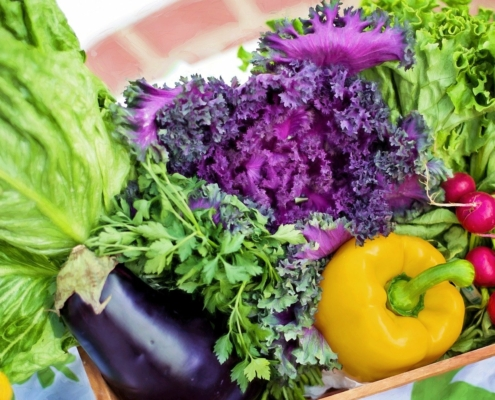 Colourful vegetables for a diverse nutrition.