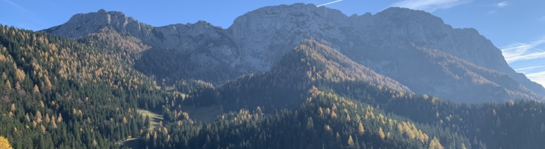 The Kamnik–Savinja Alps and their protected forests.