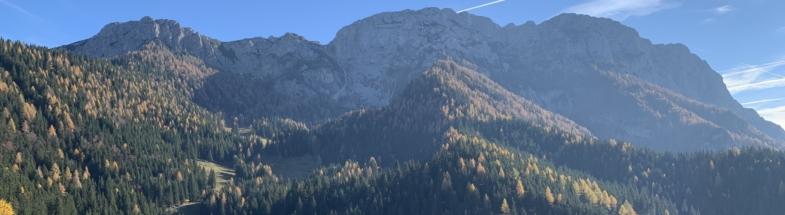 Die Wälder der Steiner Alpen in Slowenien als CO2 Speicher.